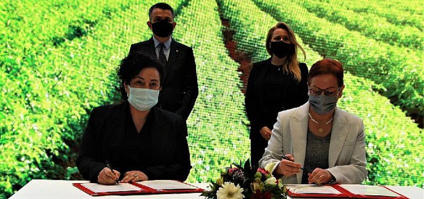 Tarım ve Orman Bakanlığı'nın sağladığı işbirliği desteğiyle tarım sektöründeki kadınlara Kız Kardeşim eğitimleri verilecek