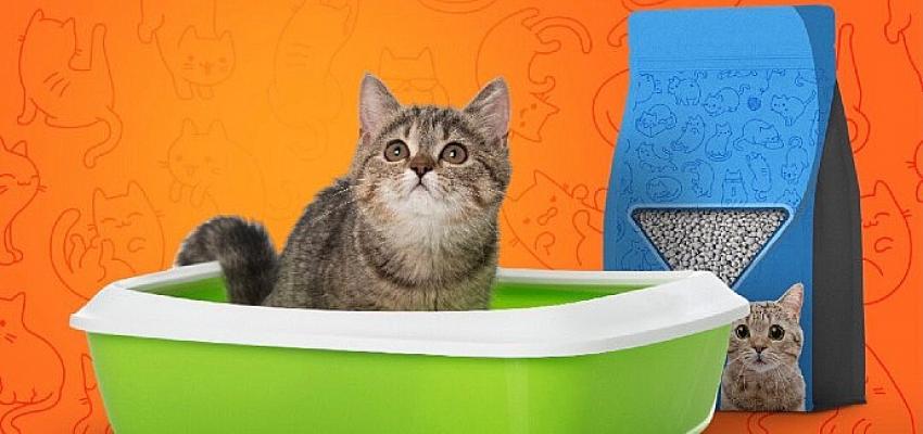 Trendyol: Türkiye'nin kedi kumu Bursa'dan