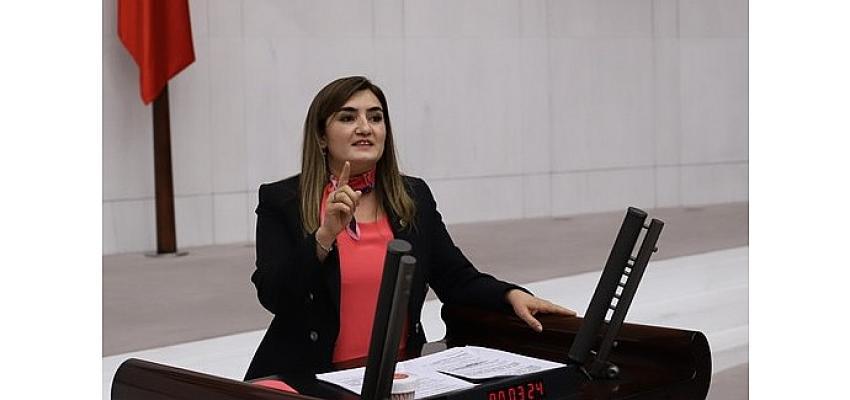 """CHP İzmir Milletvekili Av. Sevda Erdan Kılıç: """"Salgın içeride de dışarıda da yönetilemiyor"""""""